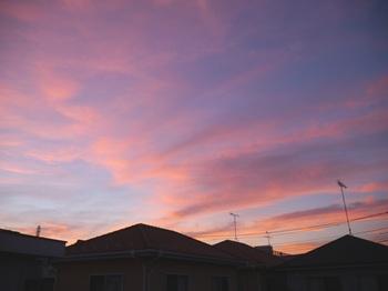 morning_01.jpg