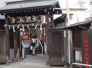 suga_kou_05.jpg