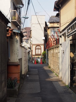 suga_kou_08.jpg