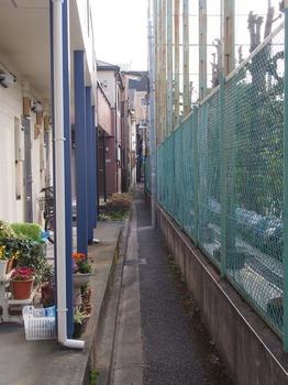 suga_kou_09.jpg
