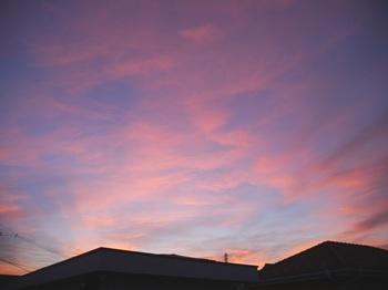 morning_02.jpg
