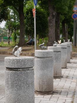 squirrel_01.jpg
